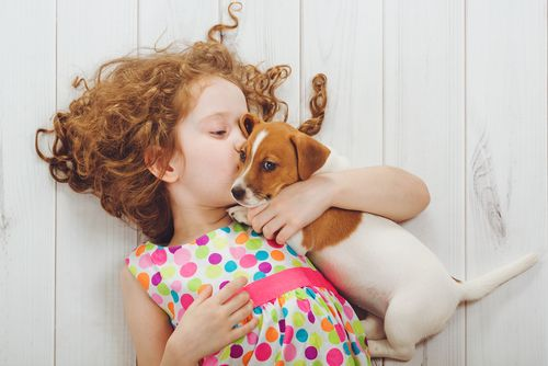 Ako vybrať šteňa