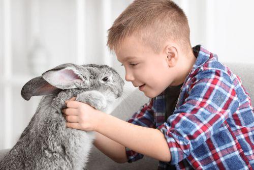Bezpečnosť detí v prítomnosti zvierat
