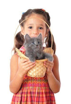 Domáce zvieratká k deťom. Áno či nie?