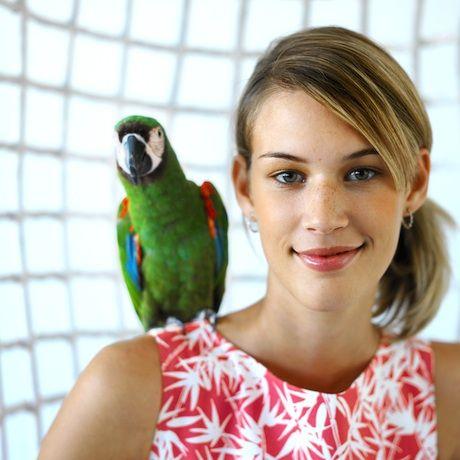 Akého papagája do rodinky ?