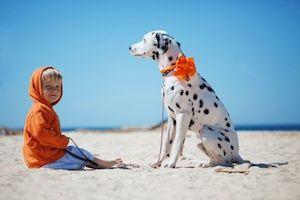 Zvieratko pre dieťa