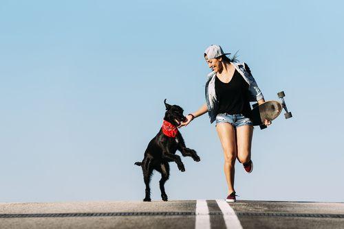 Nie sú všetci psi rodení športovci