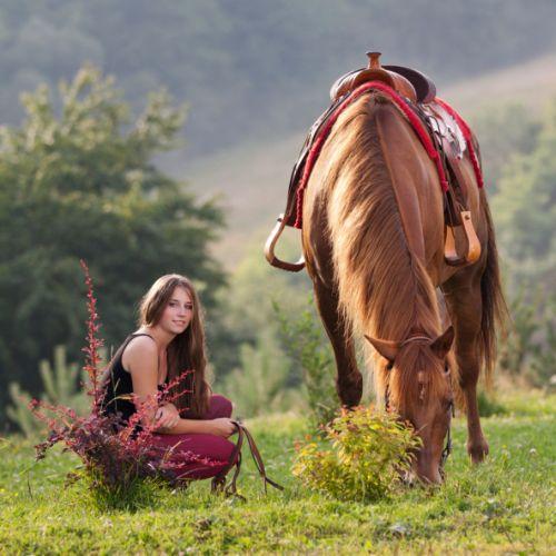 Ako sa rozprávať s koňom
