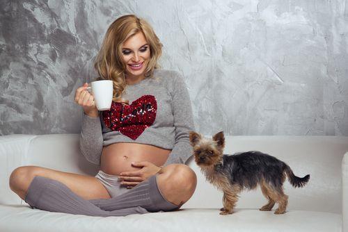 Tehotenstvo a domáce zvieratá