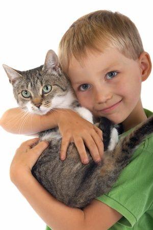 Mačka a dieťa - ochorenie toxokaróza